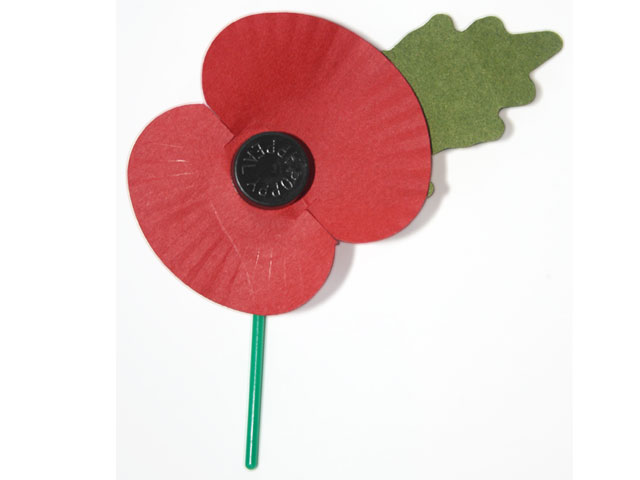 Broche do Remembrance Day
